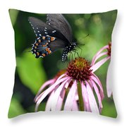 Butterfly And Coine Flower Throw Pillow