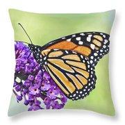 Butterfly Beauty-monarch Throw Pillow