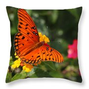 Butterfly Diaries IIi Throw Pillow