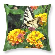 Butterfly Dining Bdwc Throw Pillow