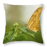 Butterfly Garden, Calgary Zoo, Calgary Throw Pillow