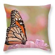 Butterfly Garden Iv Throw Pillow