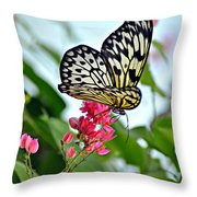 Butterfly Glow Throw Pillow