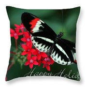 Butterfly Holiday Card Throw Pillow