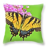Butterfly In Candyland Throw Pillow