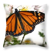 Butterfly In October Throw Pillow