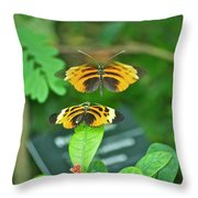 Butterfly Lovers Throw Pillow
