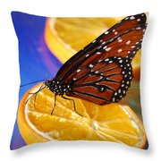 Butterfly Nectar Throw Pillow