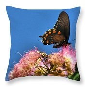 Butterfly On Mimosa Blossom Throw Pillow