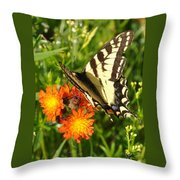 Butterfly On Orange Flowers Throw Pillow
