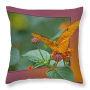 Butterfly Orange 16 By 20 Throw Pillow