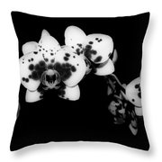 Butterfly Orchid In The Shadows Throw Pillow