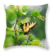 Butterfly Tiger Swallow Throw Pillow