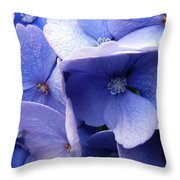 Butterfly Wing Blue Flowers Throw Pillow