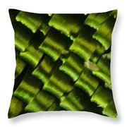 Butterfly Wing Scales Throw Pillow