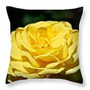 Buttery Rose Throw Pillow