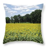 Buttonwood Farm 2 Throw Pillow