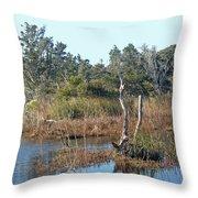 Buxton Salt Marsh - Outer Banks Nc Throw Pillow