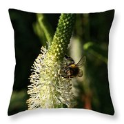 Buzz Buzz Throw Pillow