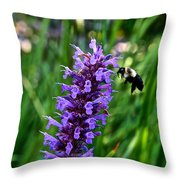 Buzzing Hyssop Throw Pillow