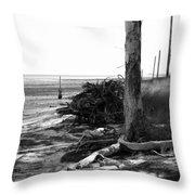 Bwhurricane Damage Throw Pillow
