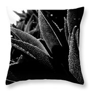 By The Estuary Shore  Throw Pillow