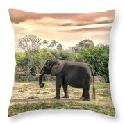 By Waters Edge Throw Pillow