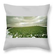 Kent In England Throw Pillow