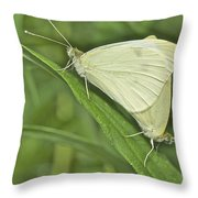 Cabbage White Butterflies 5267 Throw Pillow