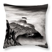 Cabrillo Tide Pool Throw Pillow