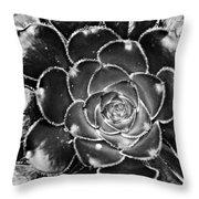 Cactus 10 Bw Throw Pillow