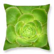 Cactus 11 Throw Pillow