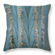 Cactus 13 Throw Pillow