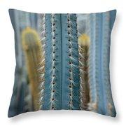 Cactus 14 Throw Pillow
