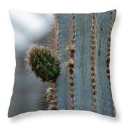Cactus 17 Throw Pillow