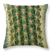 Cactus 19 Throw Pillow