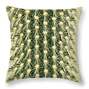 Cactus 21 Contrast Throw Pillow