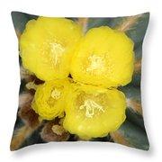 Cactus 37 Throw Pillow