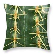 Cactus 4 Throw Pillow