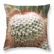 Cactus 43 Throw Pillow