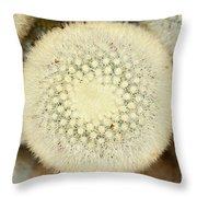 Cactus 44 Throw Pillow