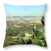 Cactus At Samaria Throw Pillow