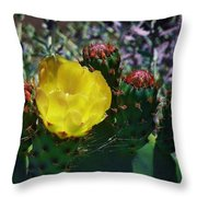 Cactus Blossom 8 Throw Pillow
