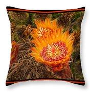 Cactus Flower 3 Throw Pillow