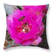 Cactus Flower Buzz Throw Pillow
