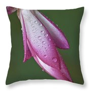 Cactus Flower Drops Throw Pillow