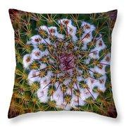 Cactus Radiance Throw Pillow