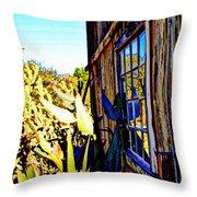 Cactus Reflection Throw Pillow