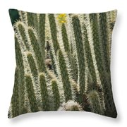 Cactus With Halos Throw Pillow