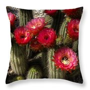 Cactus With Red Flowers Throw Pillow